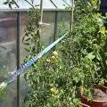 irri-tape-crops
