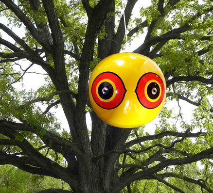 Scare Eye Balloons Visual Bird Deterrent Pigeon Repellent