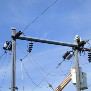 Plastic Spikes on Power Line
