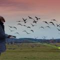 Agrilaser Handheld Bird Repellent - Open Field