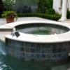 solar-bird-repeller-pool