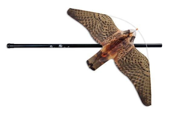 hawk-bird-scarer