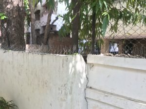 monkey-control-spikes-compound-wall