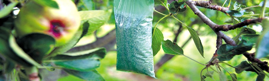 Bird Control India - Prompt Pest Control Equipments