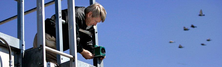 Hi-Tech Electronic Bird Repellent - Prompt Pest Control Equipments