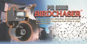 sonic-bird-chaser-application