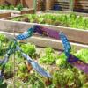 irr-tape-terrace-garden