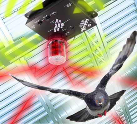 super-quadblaster-qb-4-pigeon-repellent - Prompt Pest